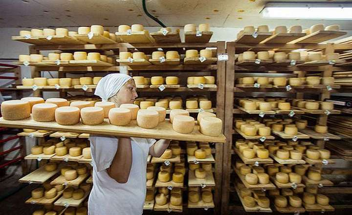 производство растительного масла курсовая работа