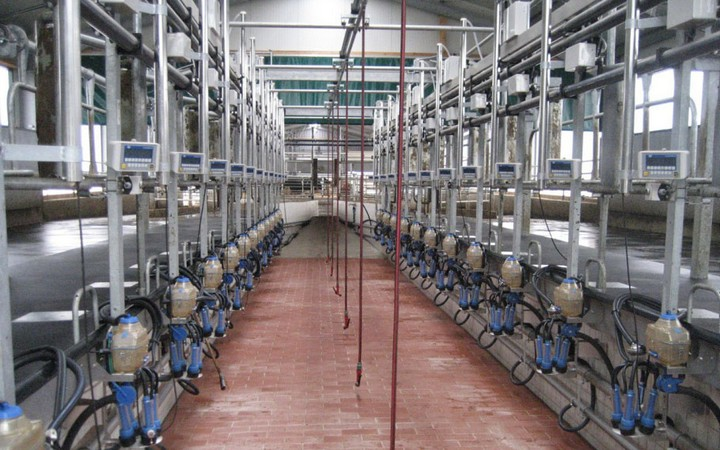 Automated milking room