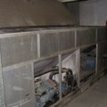 CHILLER, air-cooled condenser Climaveneta WRAT / B 0501-1422 - 1202, photo 1